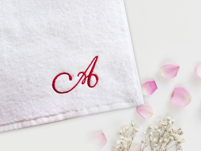 снимка на Бродирано лого хотел Александър Палас